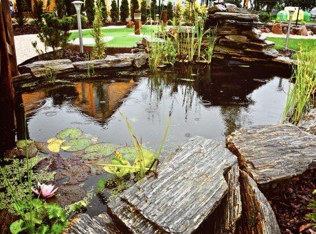 oczko wodne w Adventure Golf Park
